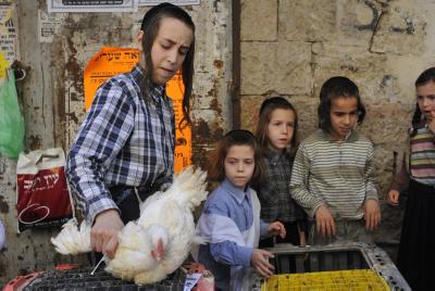 De jeunes Juifs orthodoxes font les Kaparoth avec des poulets à Méa Chearim, Jérusalem.